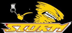 STORM_Logo_953x450px(2)